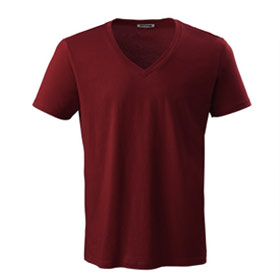 The V-Neck T-Shirt Man